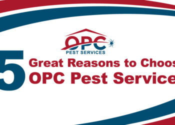 Looking for a Pest Control Company? Here are Five Great Reasons to Choose OPC Pest Services!