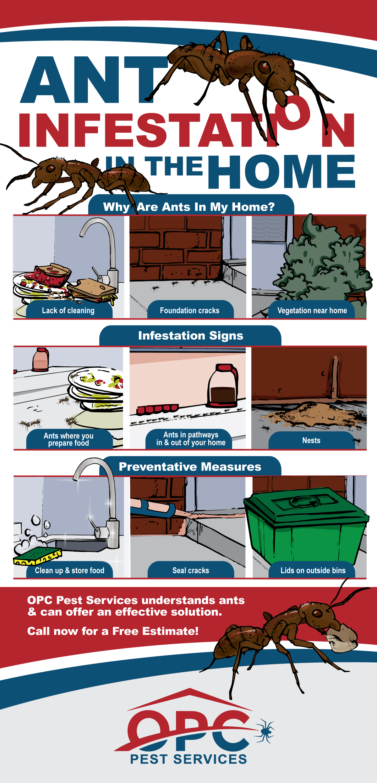 OPC Pest Services - Ant Infestation In The Home Infographic