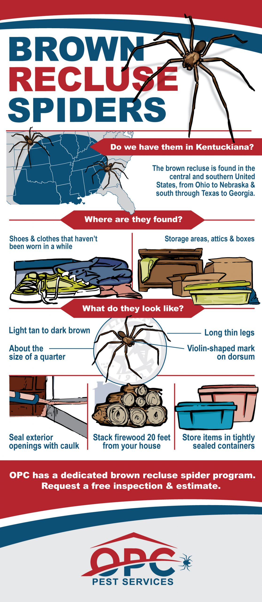 OPC Pest Services - Brown Recluse Spiders Infographic