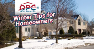 OPC pest control winter tips for homeowners