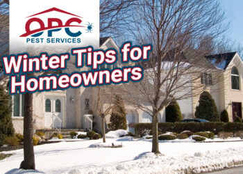 Winter's Here! Get Your House Ready With These Helpful Tips.
